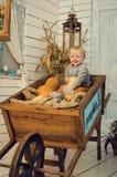 Petit garçon de sourire avec des potirons Photographie stock