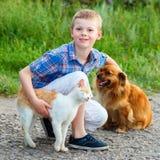 Petit garçon de sourire avec un chat et un chien se reposant sur la route, Images stock