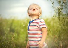 Petit garçon drôle Photo stock