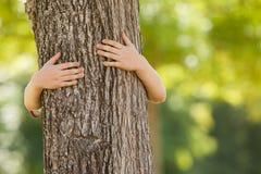 Petit garçon en parc étreignant l'arbre photographie stock