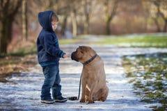 Petit garçon en parc avec son ami de chien Image stock