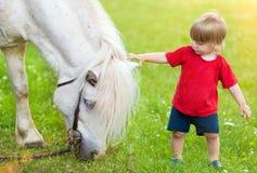 Petit garçon et cheval Photographie stock
