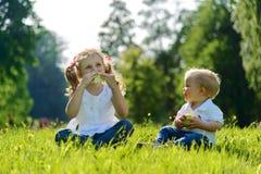 Petit garçon et fille mangeant des pommes sur le pique-nique en parc Photographie stock