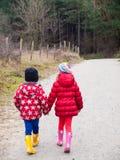 Petit garçon et fille marchant main dans la main Image libre de droits