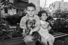 Petit garçon et fille s'asseyant sur un banc et tenant un chien dans elle Photos stock