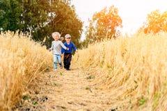 Petit garçon et fille sur un champ de blé photographie stock libre de droits