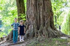 Petit garçon et frère et soeur de fille se tenant près d'un grand stu Image libre de droits