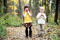 Petit garçon et petite fille mangeant des pommes dans la forêt Image libre de droits