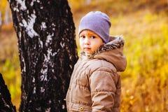 Petit garçon marchant dans la forêt d'automne Image stock