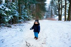 Petit garçon marchant dans la forêt d'hiver image libre de droits