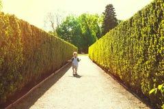 Petit garçon marchant en parc au printemps sur le coucher du soleil Images stock