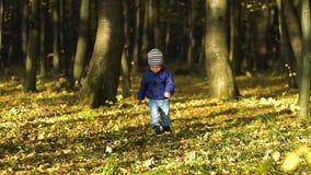 Petit garçon mignon courant par l'allée d'automne en parc Mouvement lent banque de vidéos