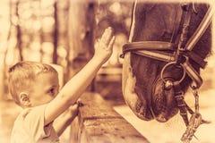 Petit garçon mignon et un cheval dans la sépia Images stock