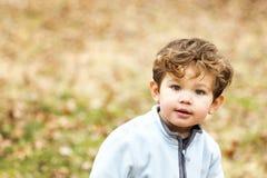 Petit garçon mignon regardant l'appareil-photo Image stock