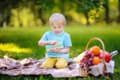 Petit garçon ouvrant le cadeau bien enveloppé pendant le pique-nique en parc ensoleillé photo libre de droits