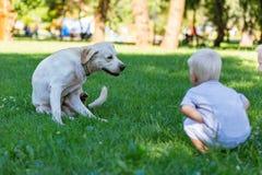 Petit garçon passant un jour avec un chien dehors photo libre de droits