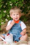 Petit garçon pendant l'été avec des fraises Photographie stock libre de droits