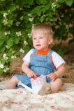 Petit garçon pendant l'été avec des fraises Photographie stock