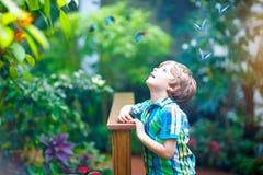 Petit garçon préscolaire blond d'enfant découvrant des plantes, des fleurs et des papillons au jardin botanique Photos libres de droits
