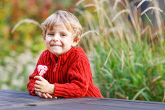 Petit garçon préscolaire drôle s'asseyant sur un mur dans la fin d'été même Images stock