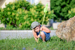 Petit garçon recherchant des insectes pour attraper Image stock