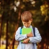 Petit garçon retournant à l'école Enfant avec le sac à dos et les livres Images libres de droits