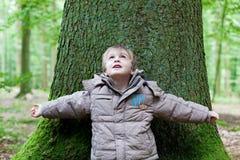 Petit garçon se penchant sur le grand arbre Images stock