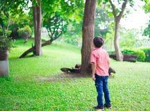 Petit garçon se tenant en parc extérieur Photo stock