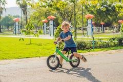 Petit garçon sur une bicyclette Attrapé dans le mouvement, sur une allée Jour préscolaire du ` s d'enfant premier sur le vélo La  Image stock