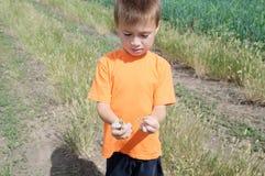 Petit garçon tenant des papillons dans des mains Images stock