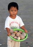Petit garçon vietnamien vendant des coquilles sur la plage Images stock