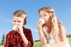 Petit garçon vivace et fille mangeant la guimauve Image libre de droits