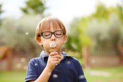 Petit garçon soufflant un pissenlit Photo stock