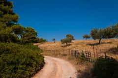 Petit groupe d'île d'Evia Photos libres de droits