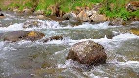 Petit groupe de abondance de rivière avec la fin de la roche, en montagnes espagnoles de Pyrénées banque de vidéos