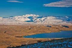Petit groupe de lac Tekapo au Nouvelle-Zélande Photos libres de droits