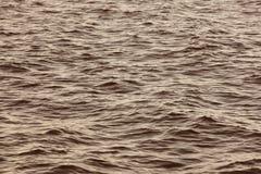 Petit groupe de mer dans le ton chaud Les eaux tranquilles Fond de nature Photo libre de droits