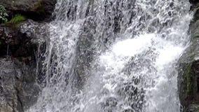 Petit groupe de rivière sur les Pyrénées (Espagne) Vall de Nuria, vallée de montagne dans les Pyrénées clips vidéos