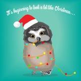 Petit hibou mignon enveloppé dans des lumières de Noël Photo libre de droits