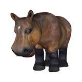 Petit hippopotame sur le blanc Image stock