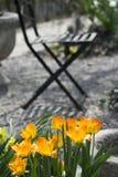 Petit jardin Photos stock
