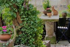 Petit Jardin Confortable Avec Le Coin Salon Image stock ...