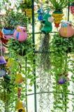 Petit jardin vertical Photographie stock libre de droits