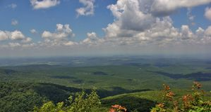 Petit Jean River Valley Stock Photography