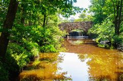 Petit Jean State Park royaltyfria bilder