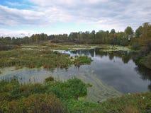 Petit lac couvert de boue sous le ciel nuageux photos libres de droits