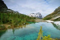 Petit lac vert dans la traînée d'Oesa de lac Photo libre de droits