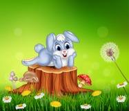 Petit lapin mignon sur le tronçon d'arbre à l'arrière-plan de saison d'été illustration stock