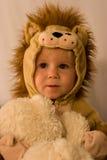Petit lion Photo libre de droits