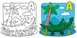 Petit livre de coloriage de crocodile Alphabet A Photo libre de droits